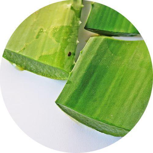 Aloe Vera 100% illatolaj