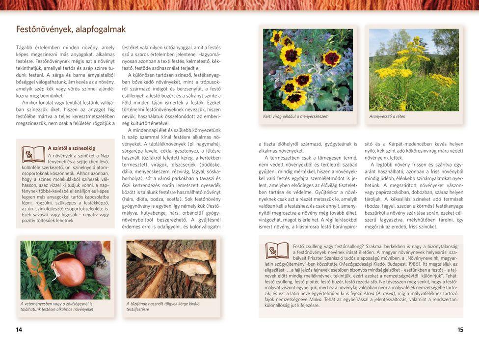 Festés növényekkel. Fonalak, textíliák